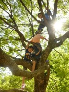 森の子教室20101021