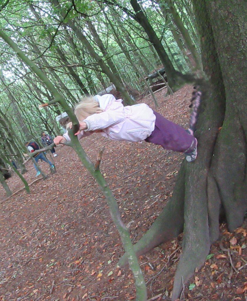 森のようちえんから高齢者までデンマークに学ぶ社会福祉研修へのお誘い