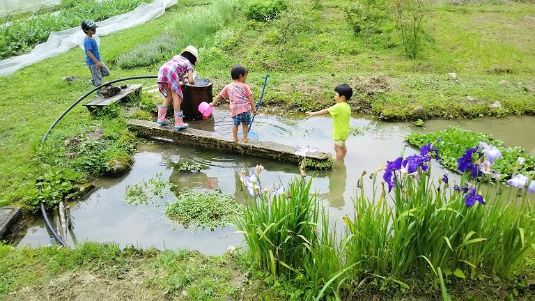 「森のようちえん」の始め方・活かし方 講演会 12/10@和歌山県かつらぎ町