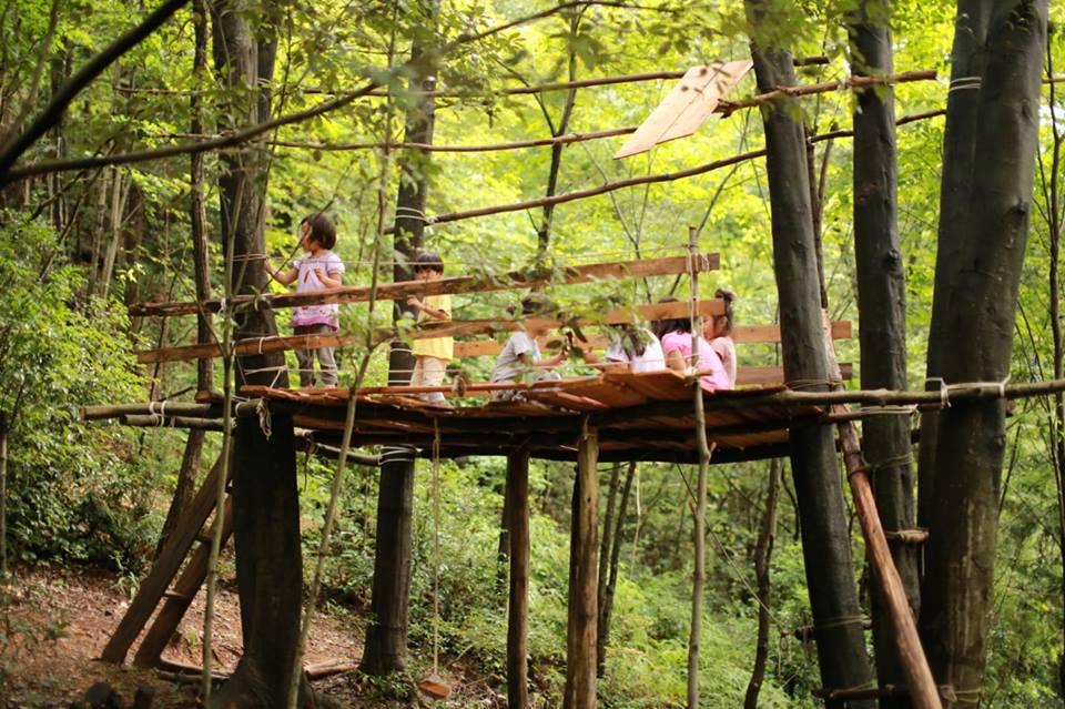 森のようちえん指導者を目指す人には最高の環境! 森林文化アカデミーが入学願書受付開始。