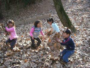 森の子教室 大阪 園児募集