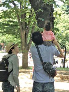 うえの遊フェアリー(0-3歳親子一緒スタイル)