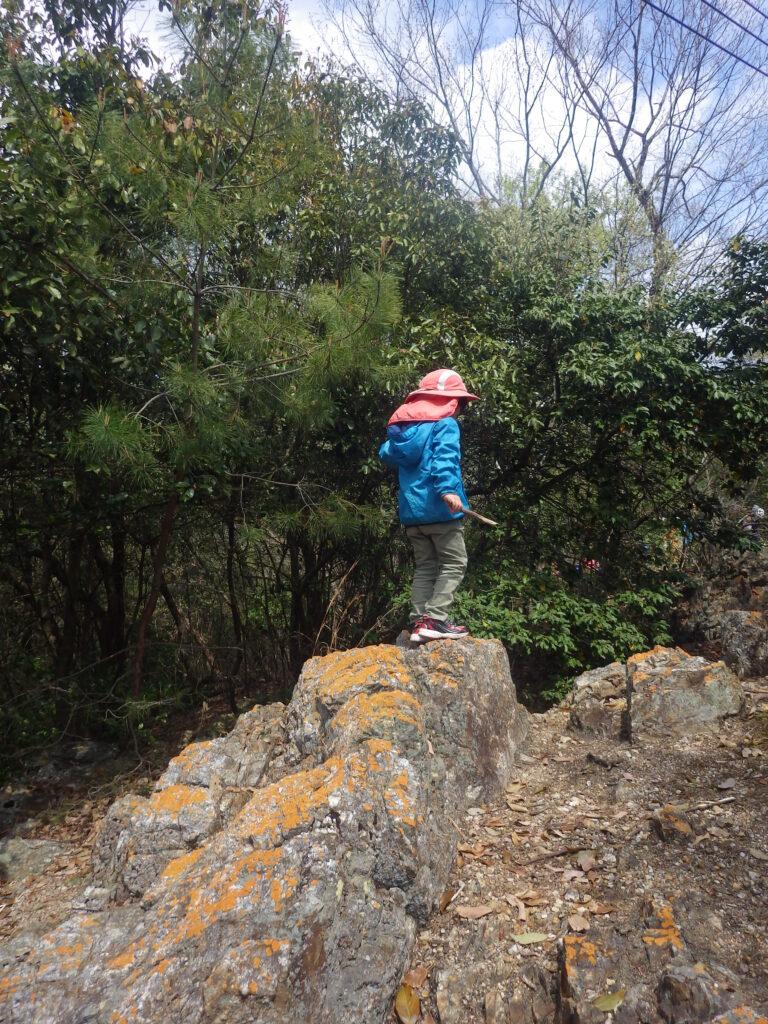 【スタッフ募集】京都・宝が池 森のようちえん どろんこ園