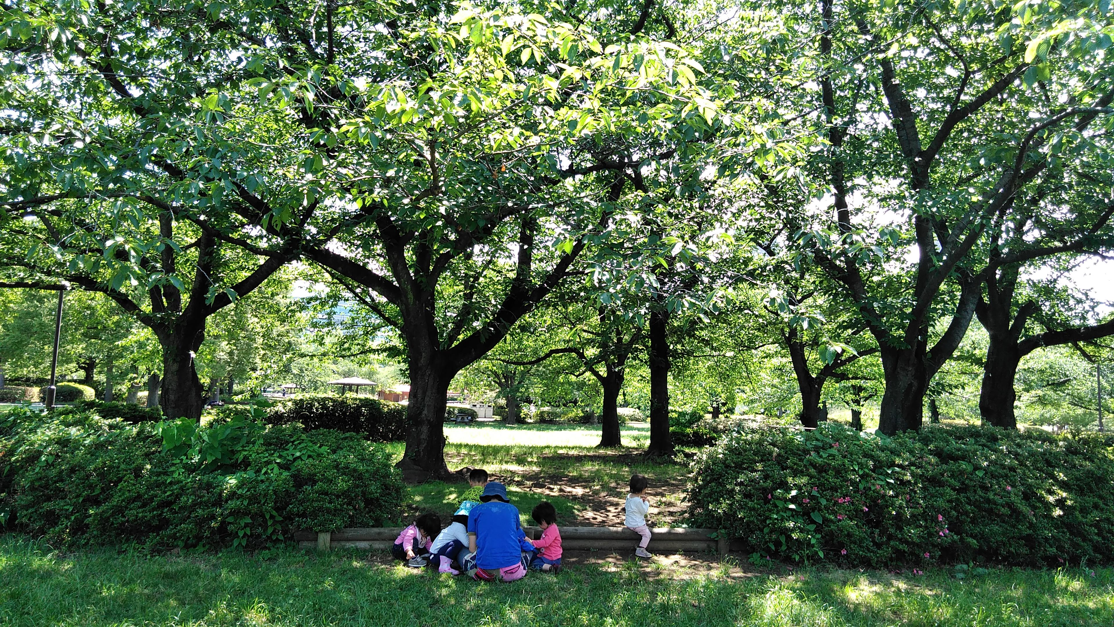 【園児募集!!】2・3歳児募集 わくわくbase亀戸保育園