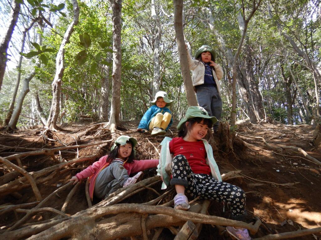 認可外保育施設により良い環境を 森のようちえんめーぷるキッズ