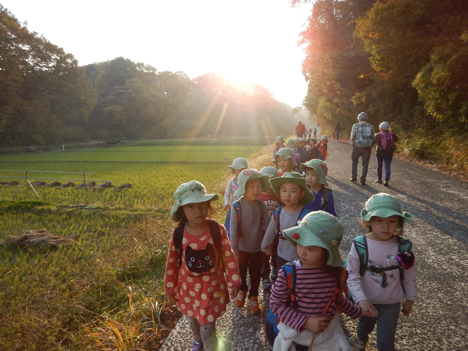 森のようちえん めーぷるキッズ(横浜市・認可外施設)2020年度 新3歳児クラス入園説明会開催のお知らせ