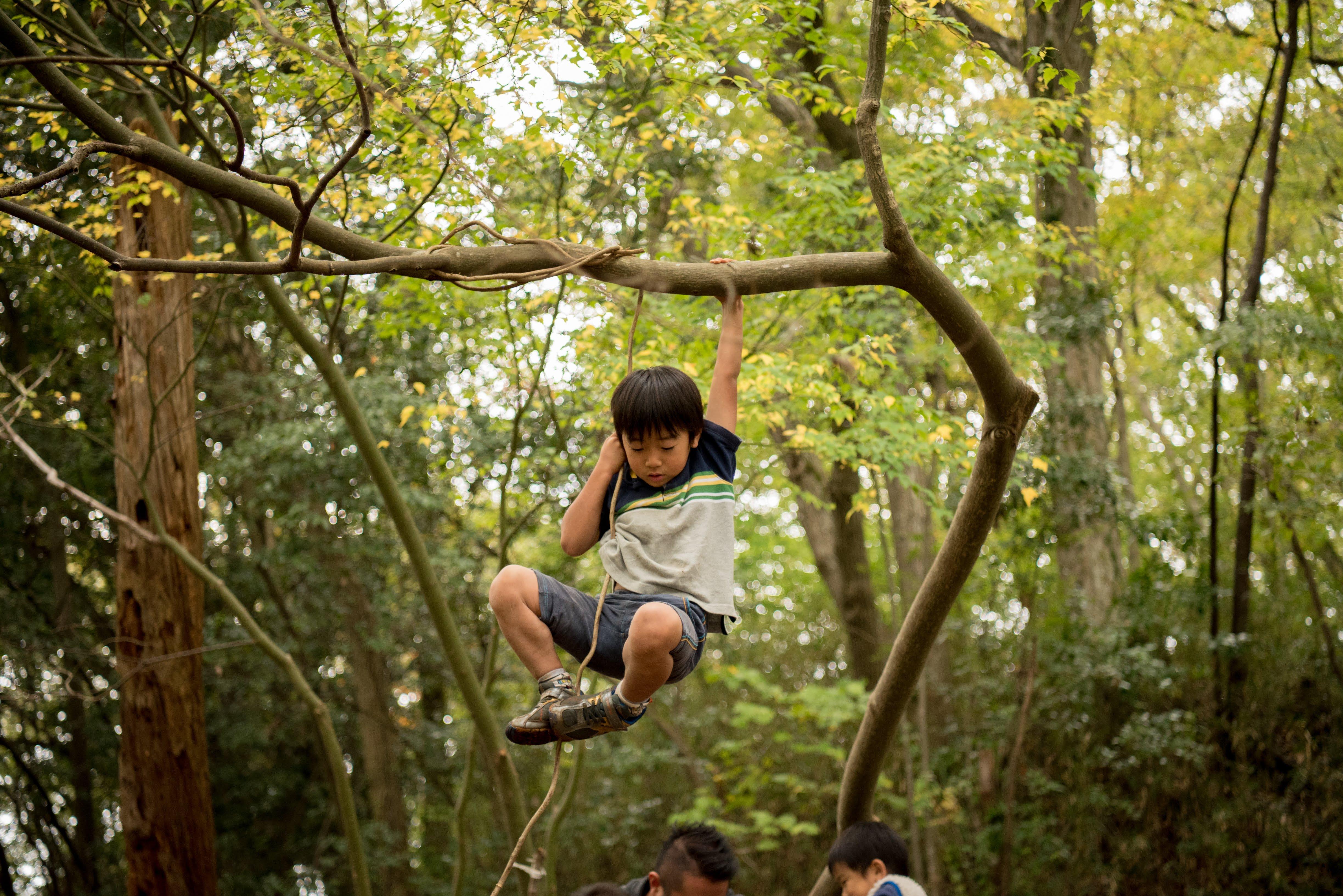 ふじの 森のようちえん てって  高尾・八王子からも園児募集中!