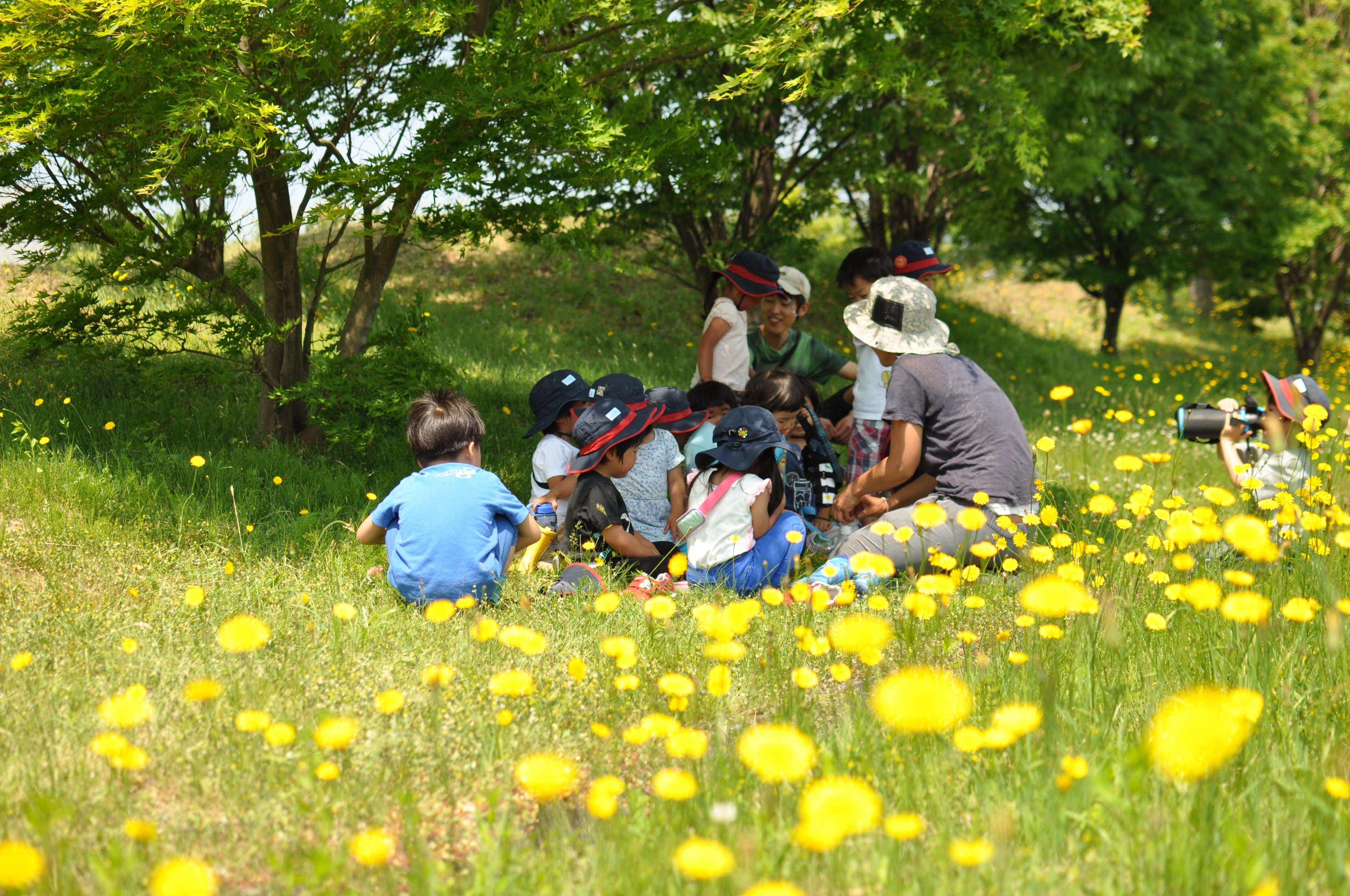 スタッフ募集:やまのこ保育園(山形県鶴岡市)&オンライン説明会開催!