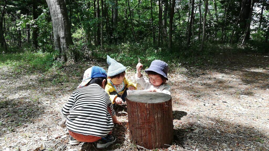 【埼玉県宮代町】1月25日開催!みやしろ森のようちえん体験&説明会