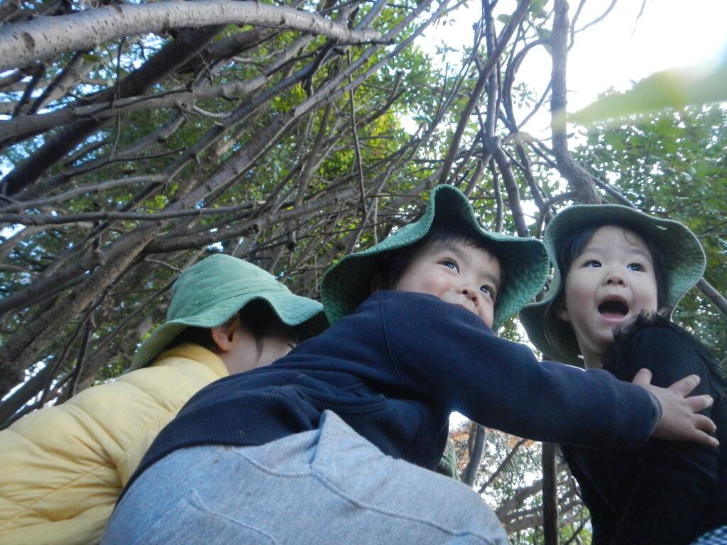 100年先を見つめる保育園プロジェクト(もあなキッズ)