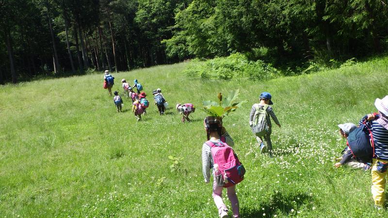 子どもと環境研究会「福島の子どもたちの今日とあした」オンライン勉強会のお知らせ