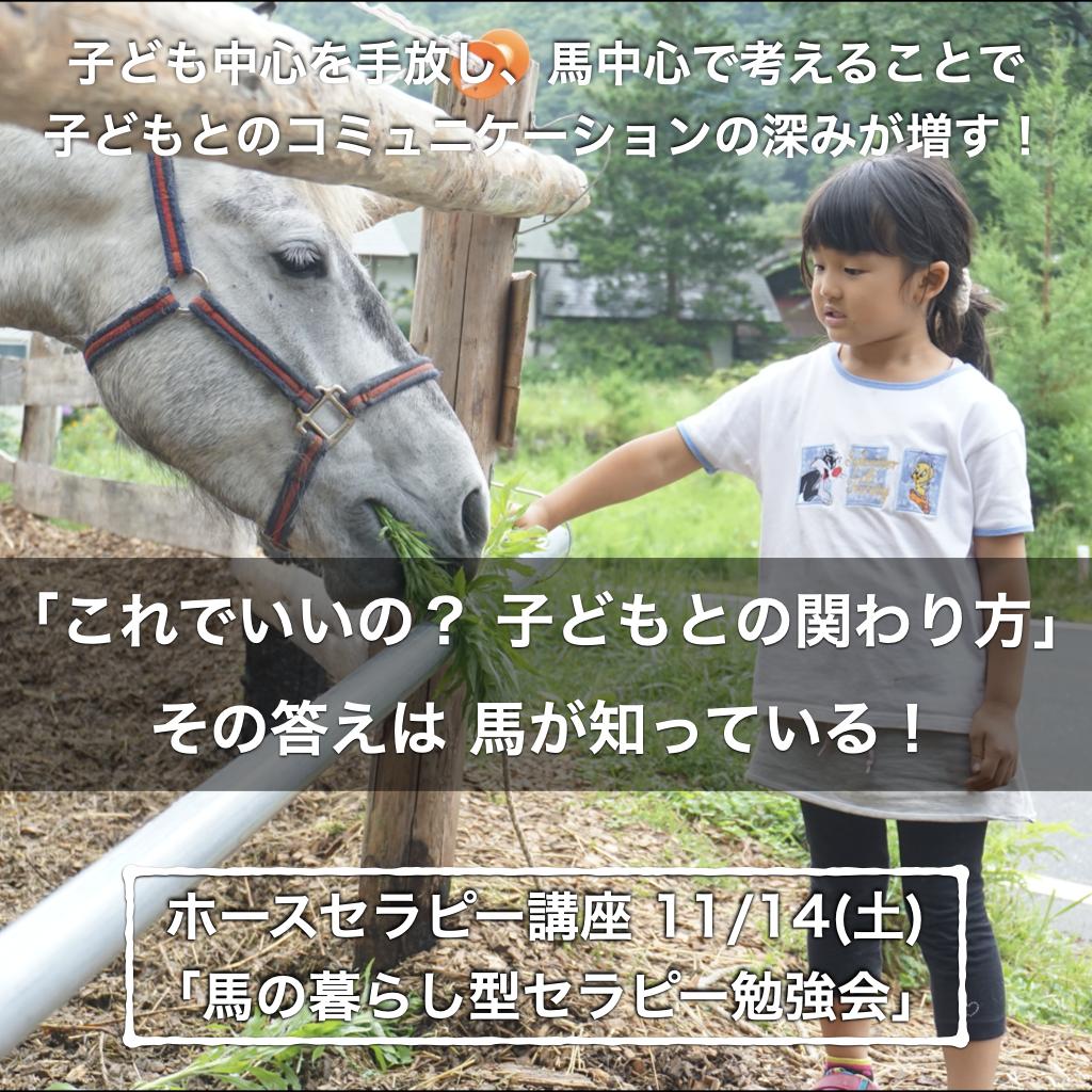 【参加募集】ホースセラピー講座「馬の暮らし型セラピー勉強会」 11/14(土)