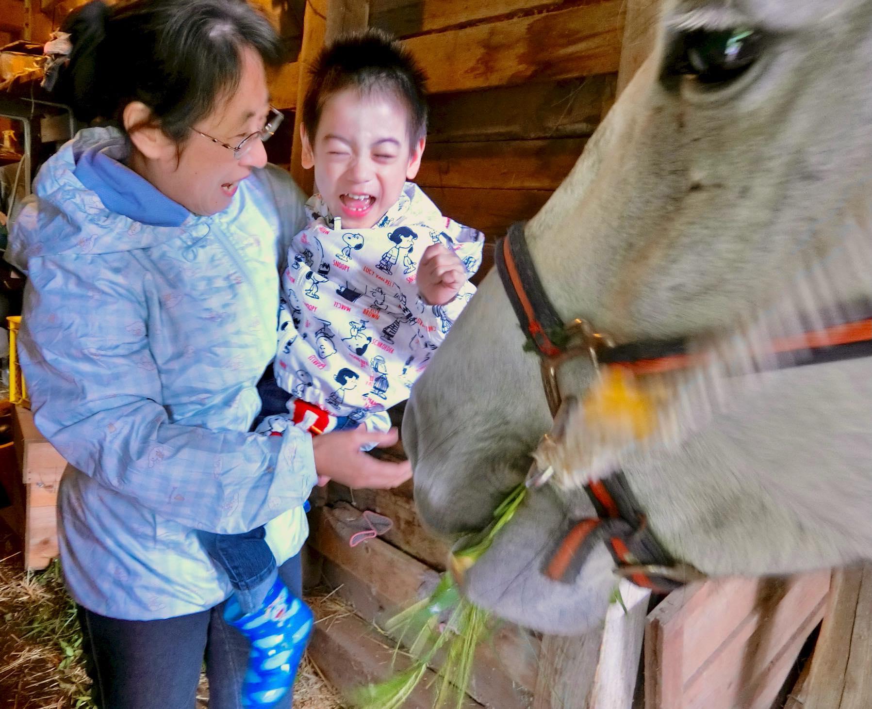 震災から10年 Yahooニュース掲載〜馬が自然が子どもを癒やし成長させる 毎月延べ200人が利用する岩手・釜石市の三陸駒舎【#あれから私は】
