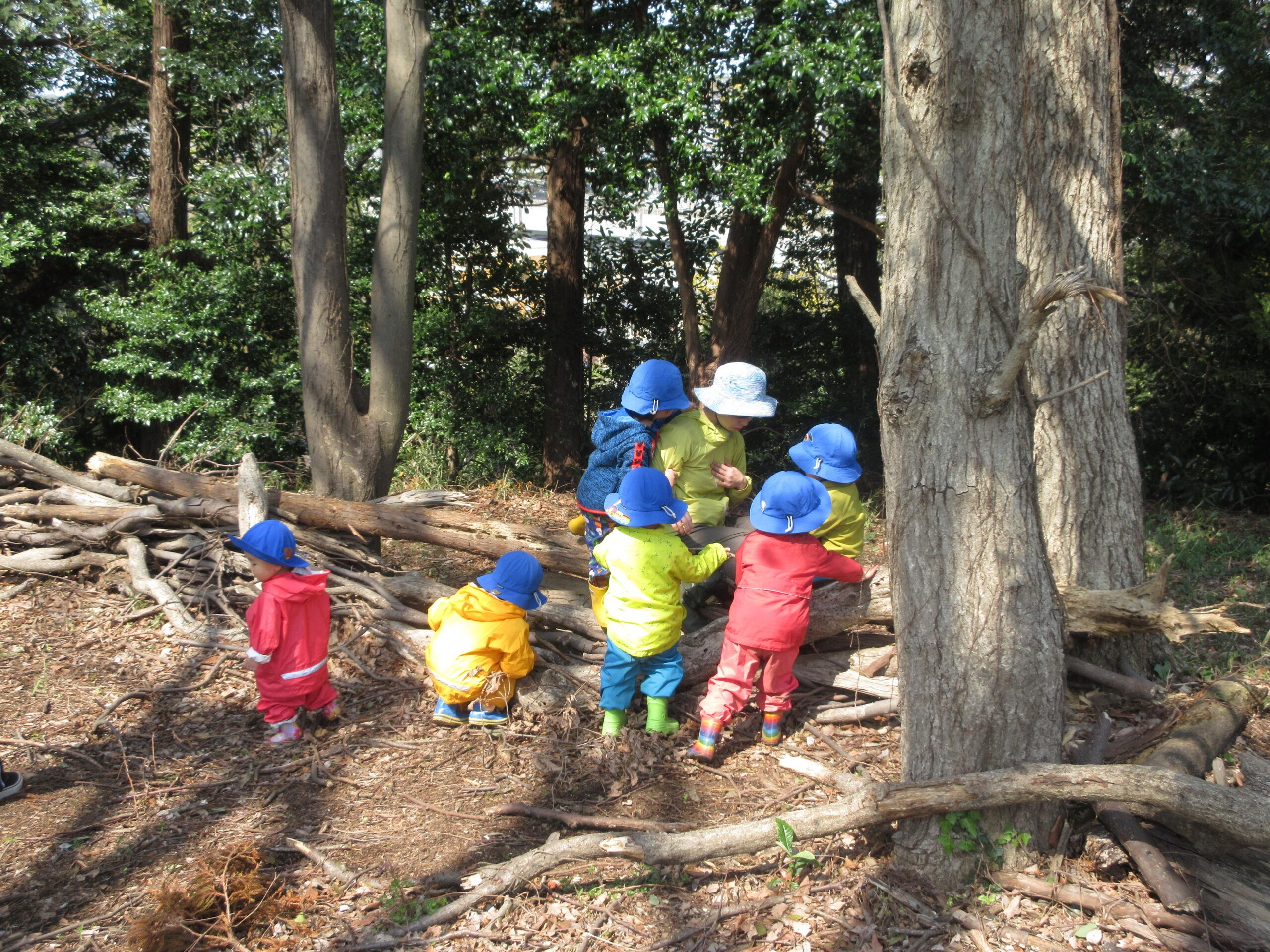 【園児募集】横浜市神奈川区 保育室たいようの家