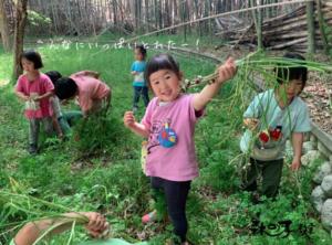 大阪 森の子教室 体験会のお知らせ